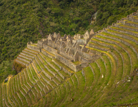5 unexpected things you'll discover on the Inca Trail