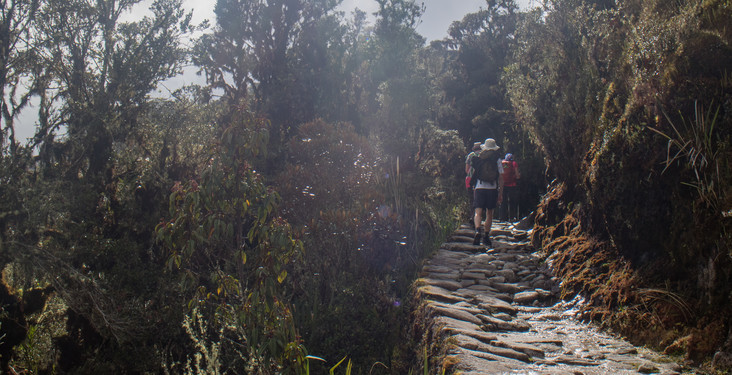 Responsible tourism on the Inca Trail