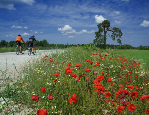 7 easy cycling holidays