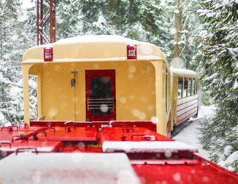 NEW TRIP:<br>Winter in Georgia