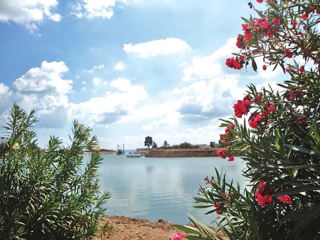 Tunis Holidays & Tours