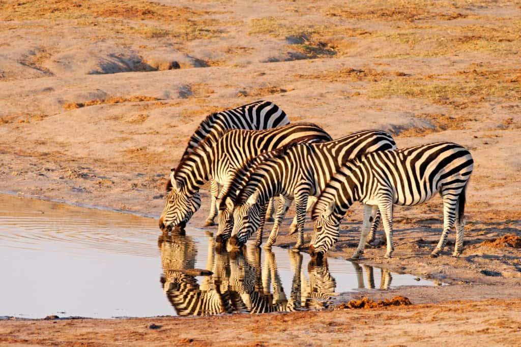 Zimbabwe Holidays & Tours