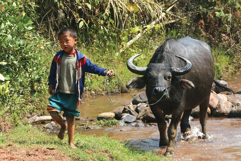 Luang Namtha Holidays & Tours