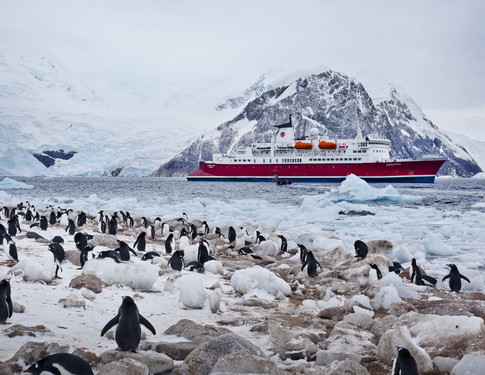 Tips for your first polar voyage