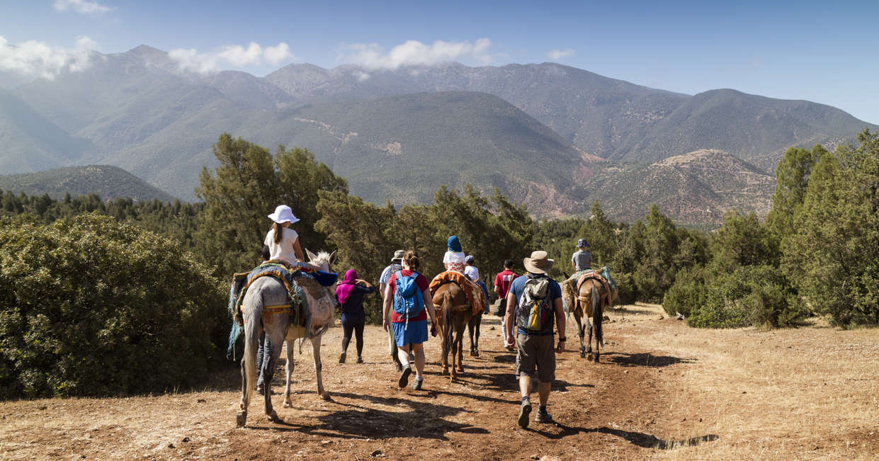 Atlas Mountains mule ride