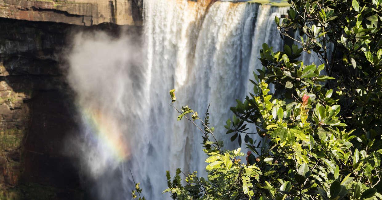 At the Kaieteur Falls (optional)