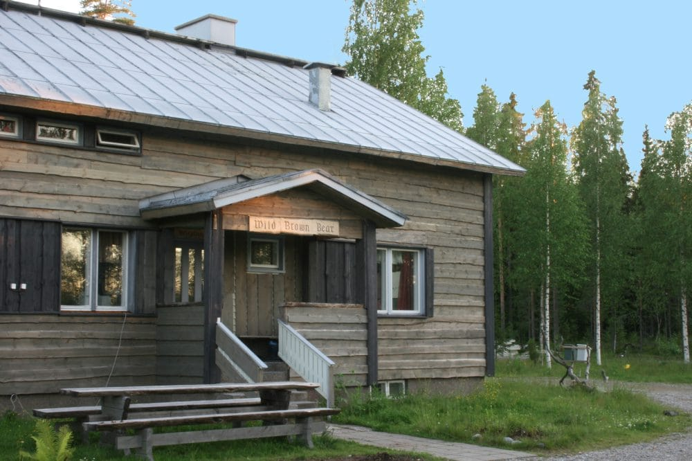 Wild Brown Bear Lodge