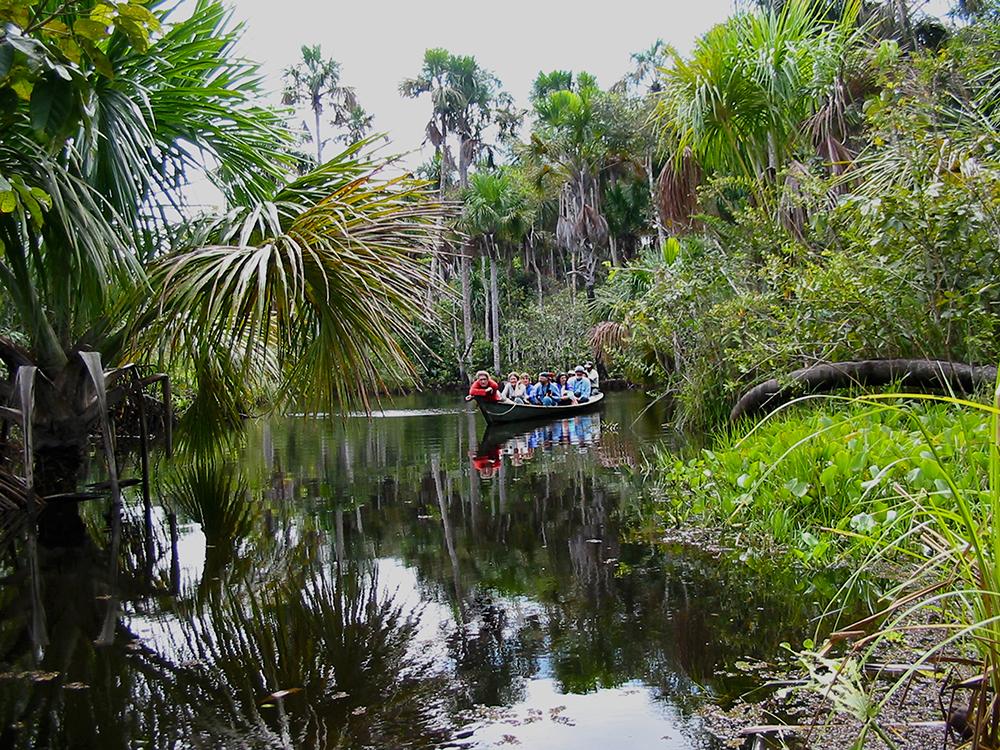 Boat trip on the Amazon rainforest
