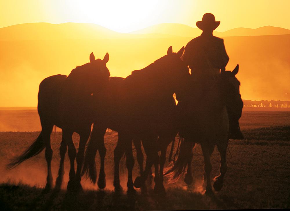 Sunset over the Gobi Desert