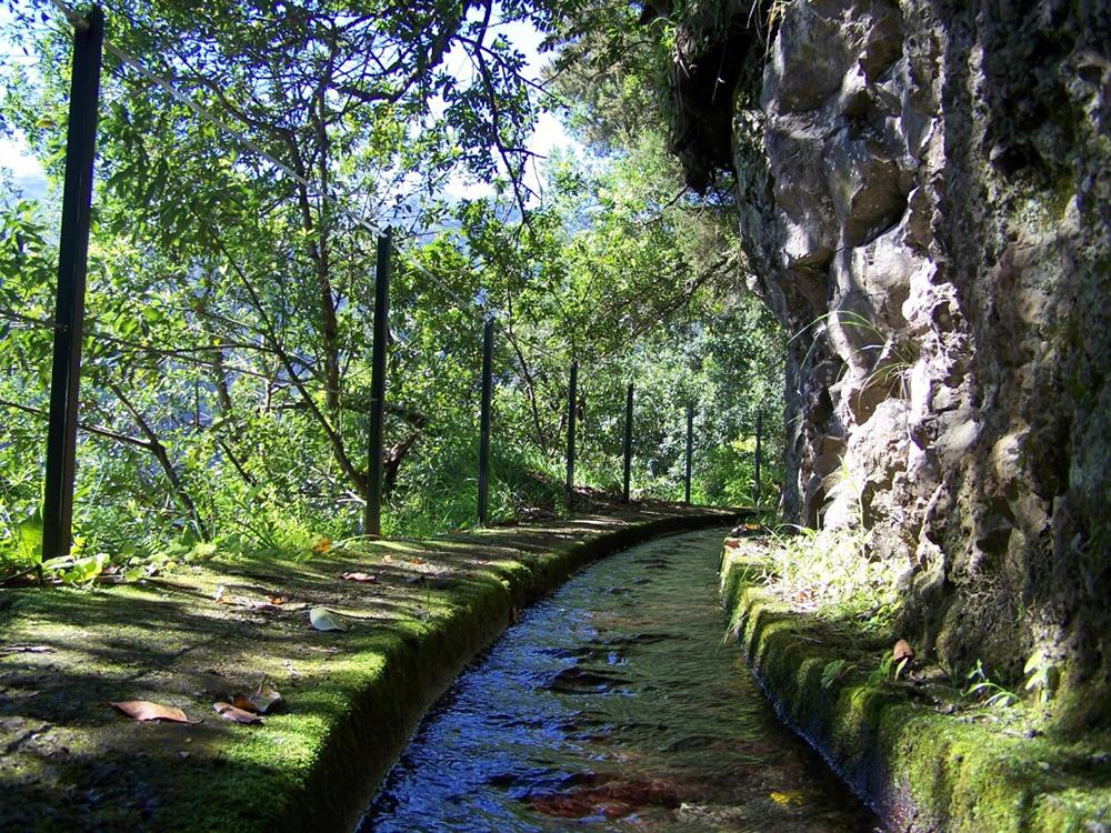 Wander along Madeira's levadas