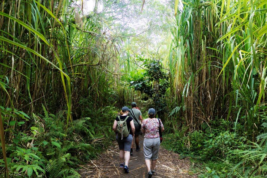 Walking in Arenal Volcano area
