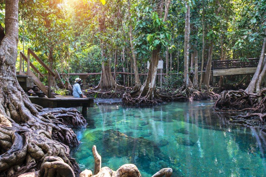 Emerald Lagoon, Krabi