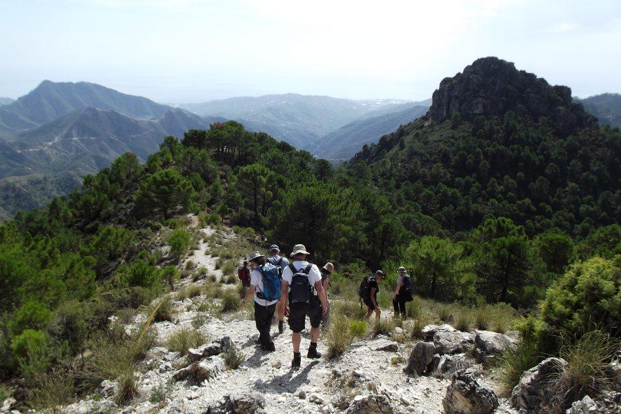 Moorish Trails