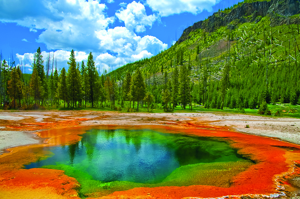 Deep green geyser in Yellowstone