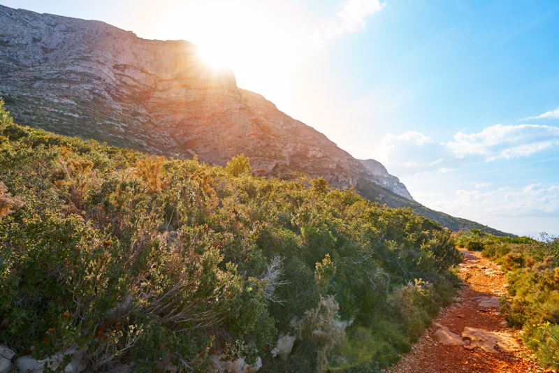 Alicante Trails